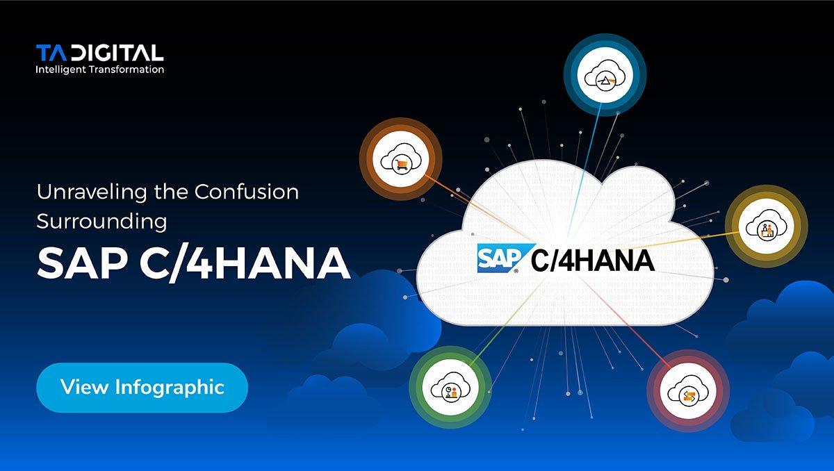 SAP blog infographic